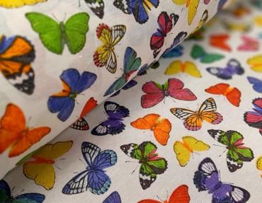 Loneta butterfly